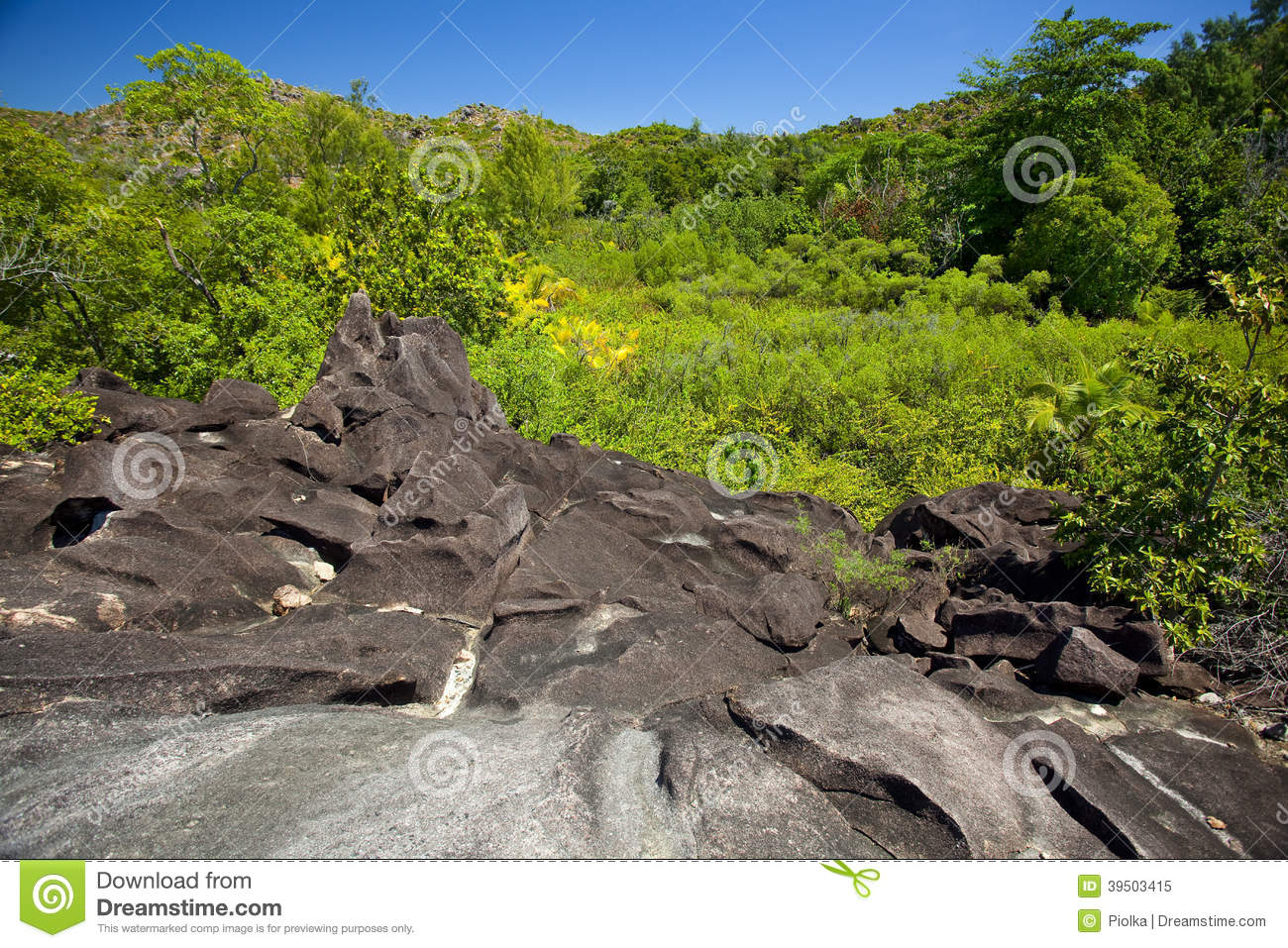 Tropical landscape with granite rocks