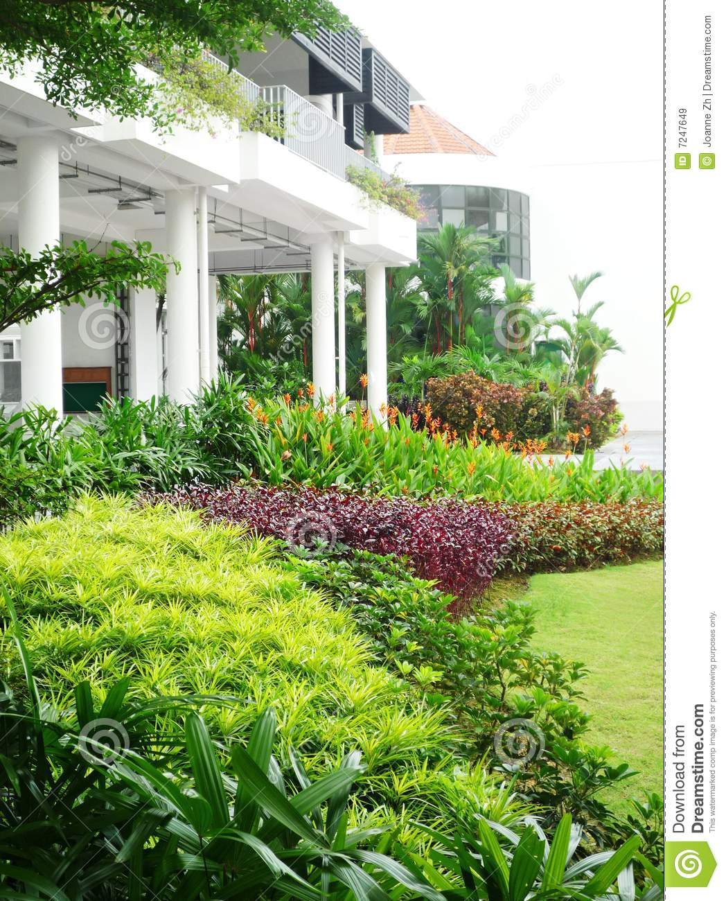 Tropical landscaping design stock image image 7247649 for Landscape plants of the southeast