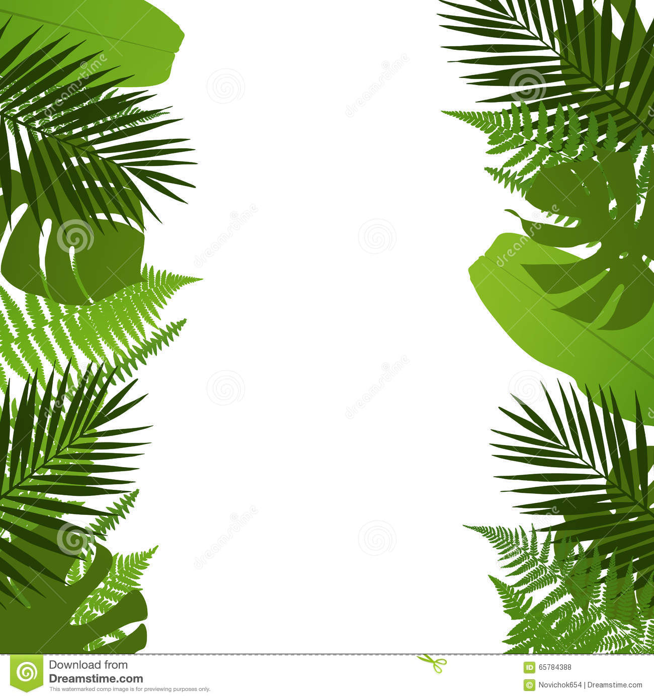 Tropical Leaves Background With Palm Fern Monstera And