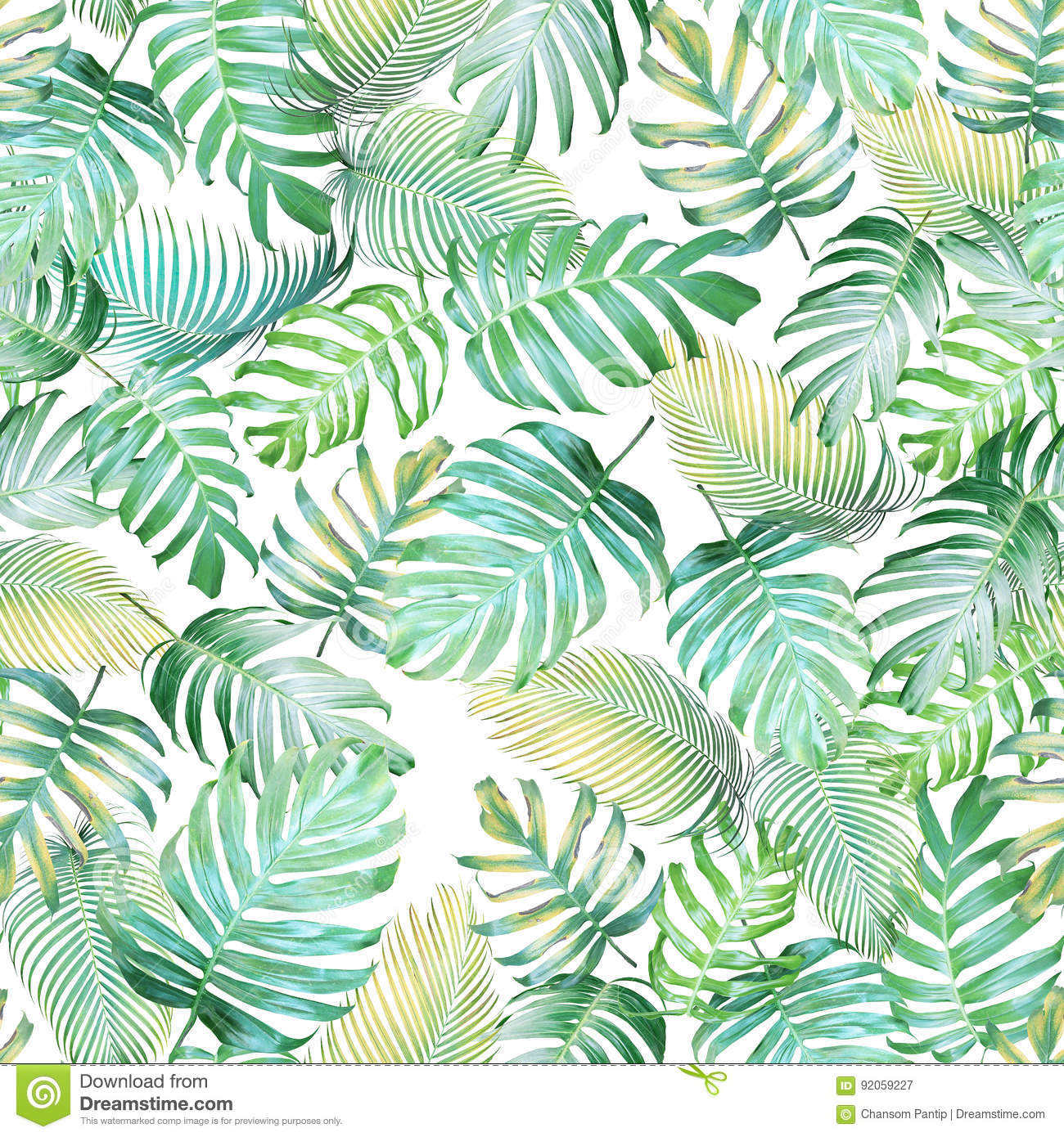 Tropical leaves seamless pattern of Monstera philodendron and pa