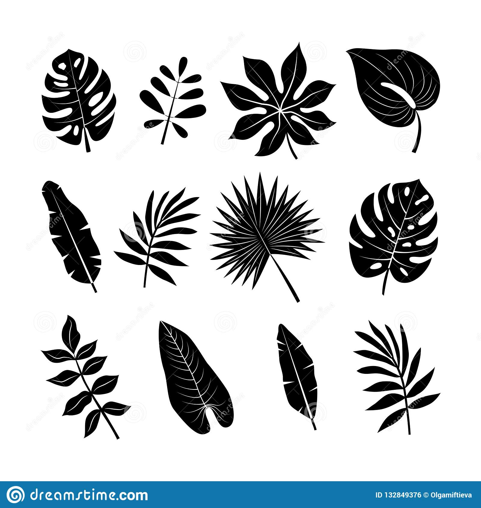 Tropical Leaves Silhouettes Set Jungle Palm Leaves Collection Stock Vector Illustration Of Decoration Hawaii 132849376 Tropical leaves and flowers in the night style for men's prints. https www dreamstime com tropical leaves silhouettes set jungle palm collection floral clip art exotic botanical print vector black isolated elements image132849376