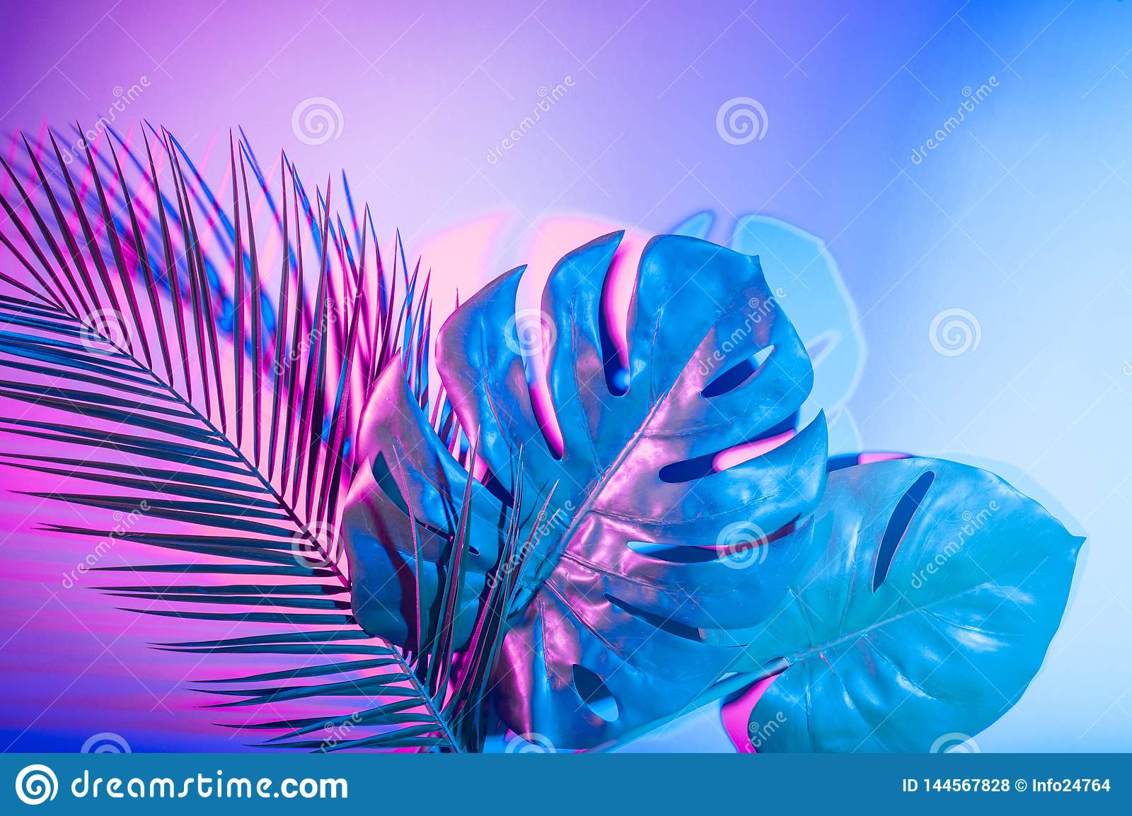 Tropical Leaves In Vibrant Bold Gradient Holographic Neon Colors Stock Photo Image Of Hipster Gradient 144567828 78 likes · 21 talking about this. https www dreamstime com tropical leaves vibrant bold gradient holographic neon colors tropical leaves vibrant bold gradient holographic neon colors image144567828