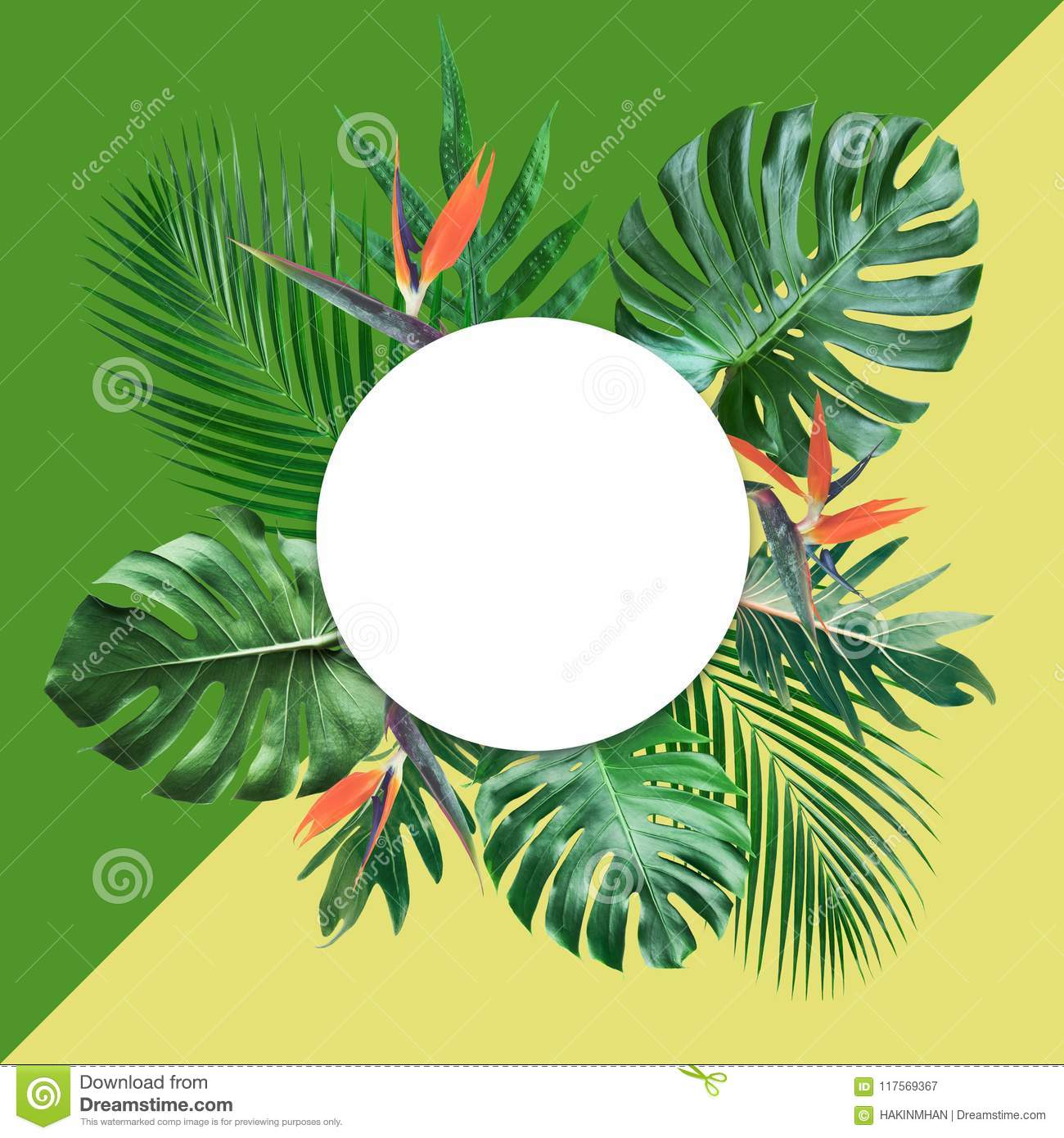 Tropical leaves with white copy space and color pastel background