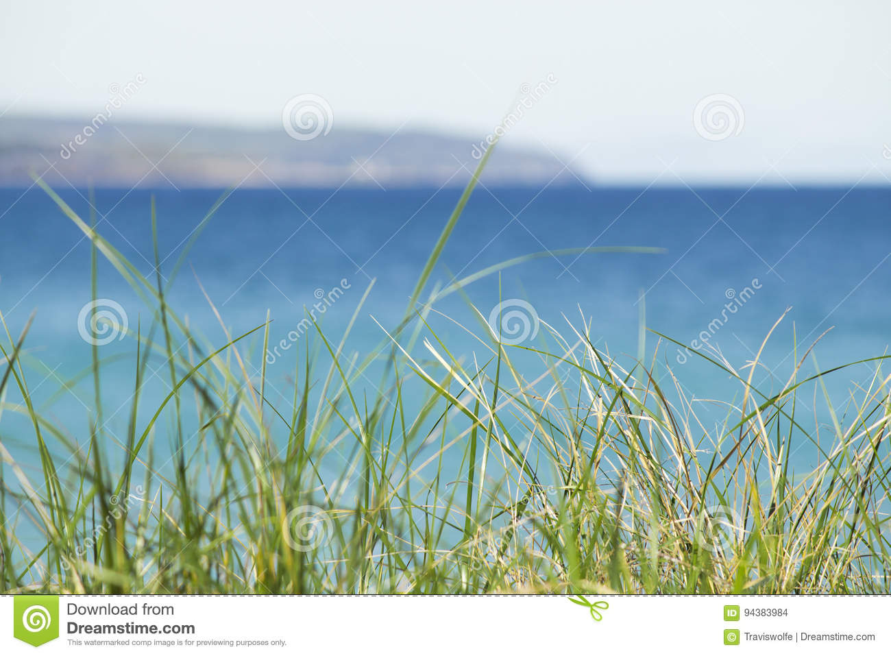 Tropical michigan waters in aqua blue color with beach dune grass emotional dramatic dream concept. Copyspace.