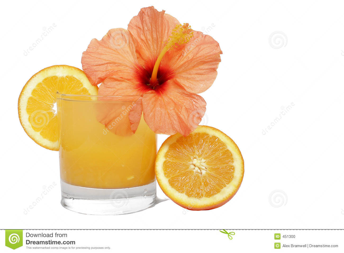 Download Tropical Orange stock photo. Image of bloom, pure, holiday - 451300