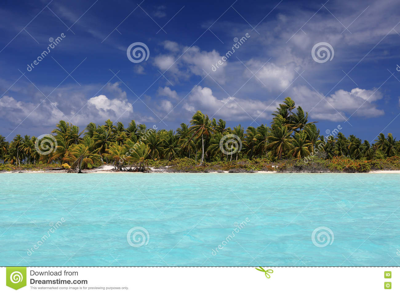 Tropical Palm Beach On Christmas Island, Kiribati Stock Photo ...