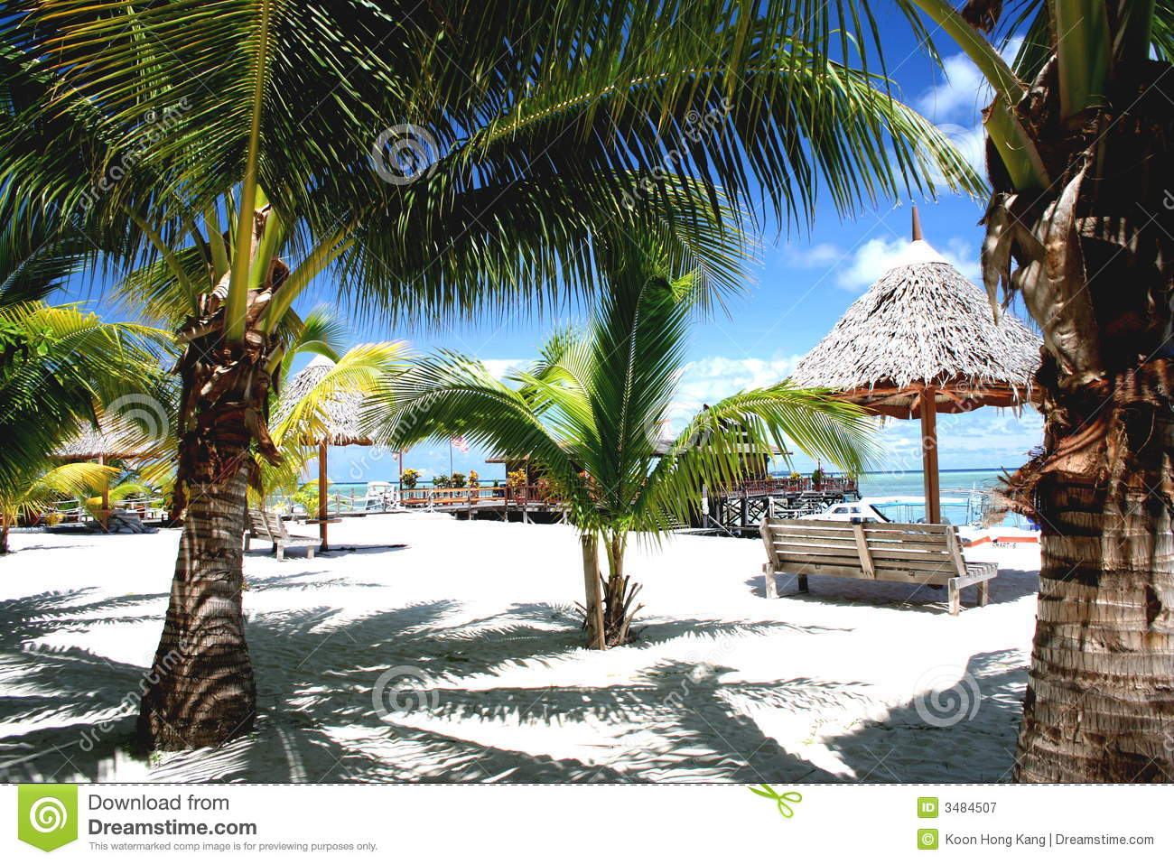 Tropical Palm Beach Resort Stock Image. Image Of Beach