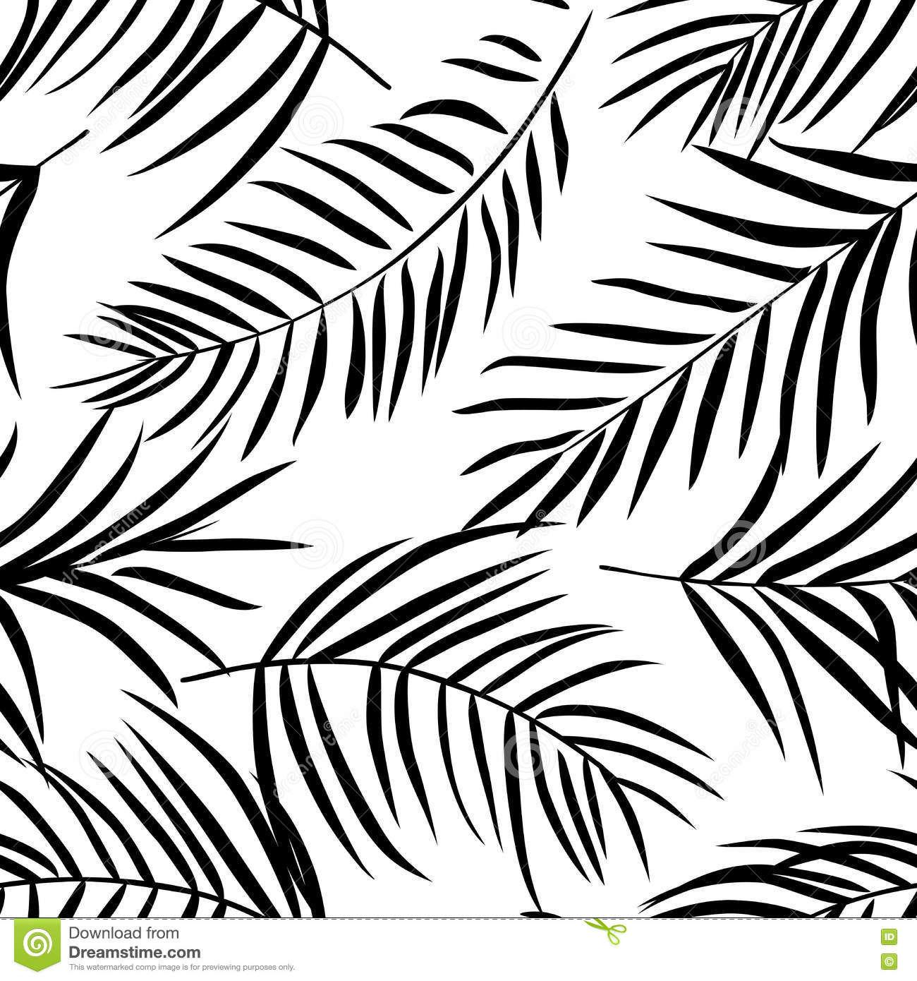 Tropical Palm Leaves Black And White Stock Vector