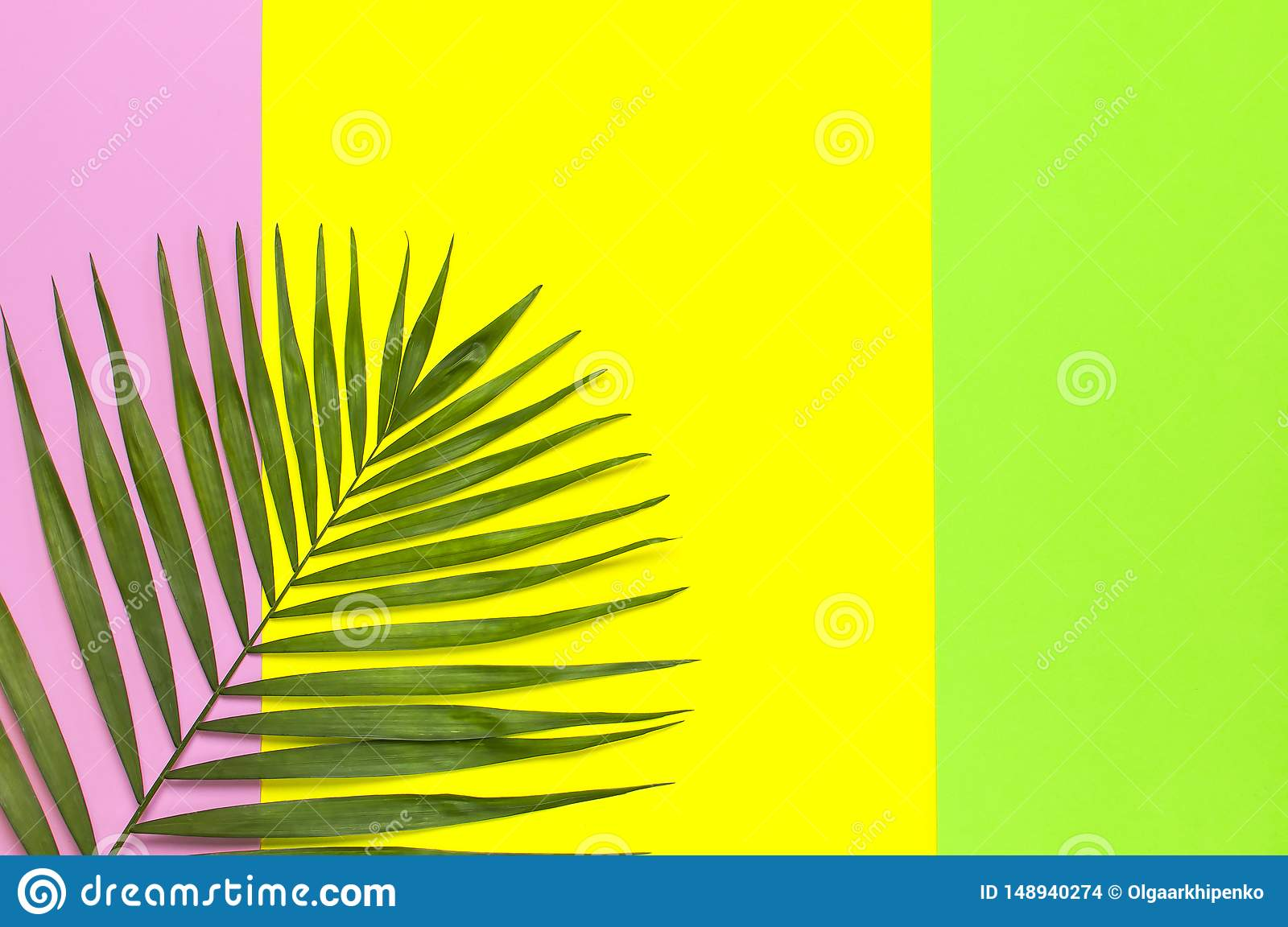 Tropical Palm Leaves On Bright Yellow Green Pink Background Flat Lay Top View Copy Space Summer Background Nature Creative Stock Photo Image Of Fashion Design 148940274 Free for commercial use no attribution required high quality images. dreamstime com