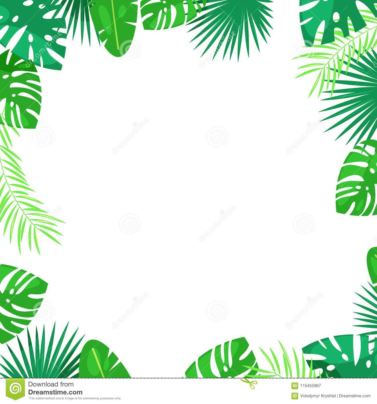 Tropical palm leaves vector square frame white background with place for text jungle summer