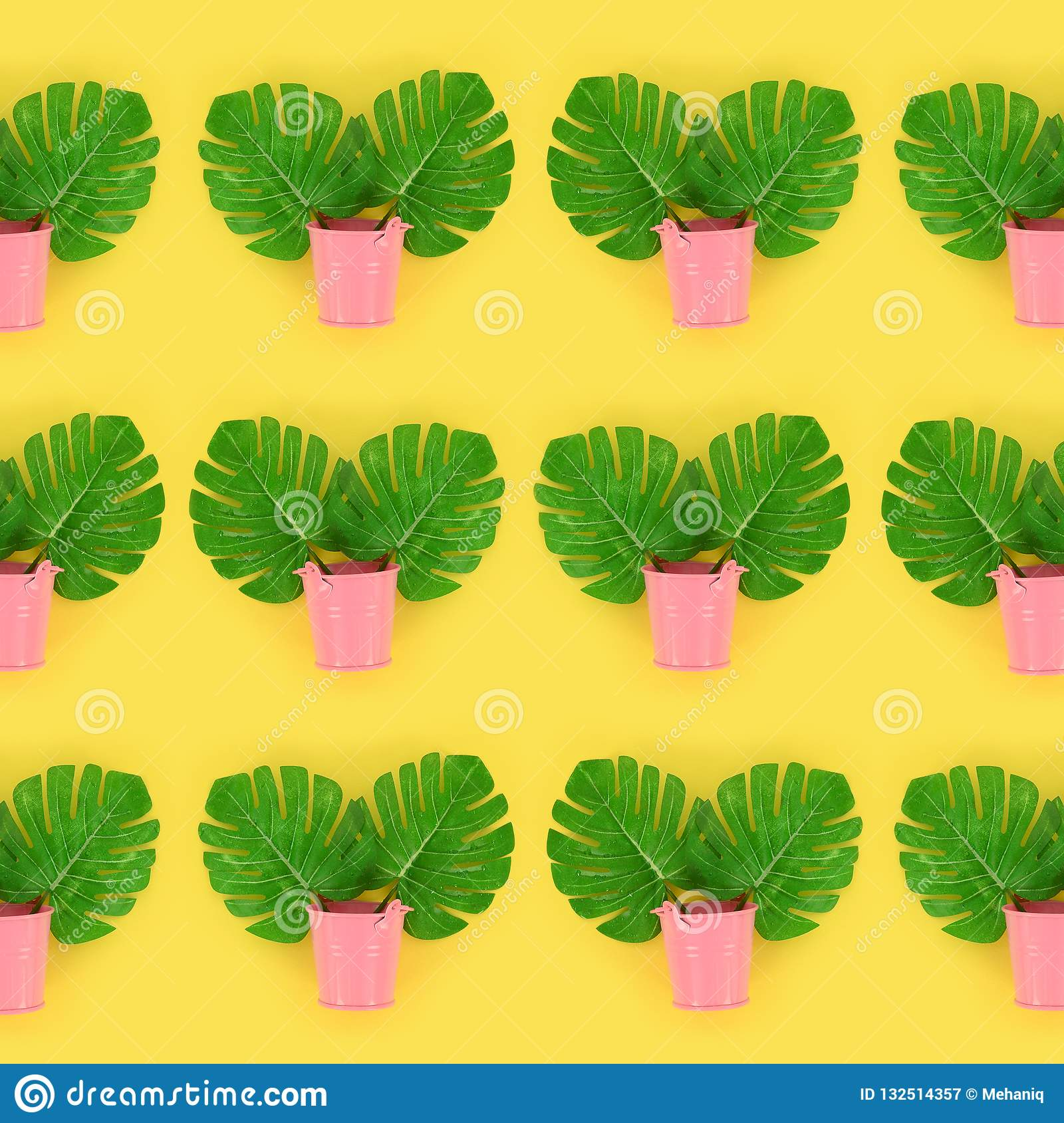 Tropical palm monstera leaves lies in a pastel pails on a colored background. Flat lay trendy minimal pattern. Top view