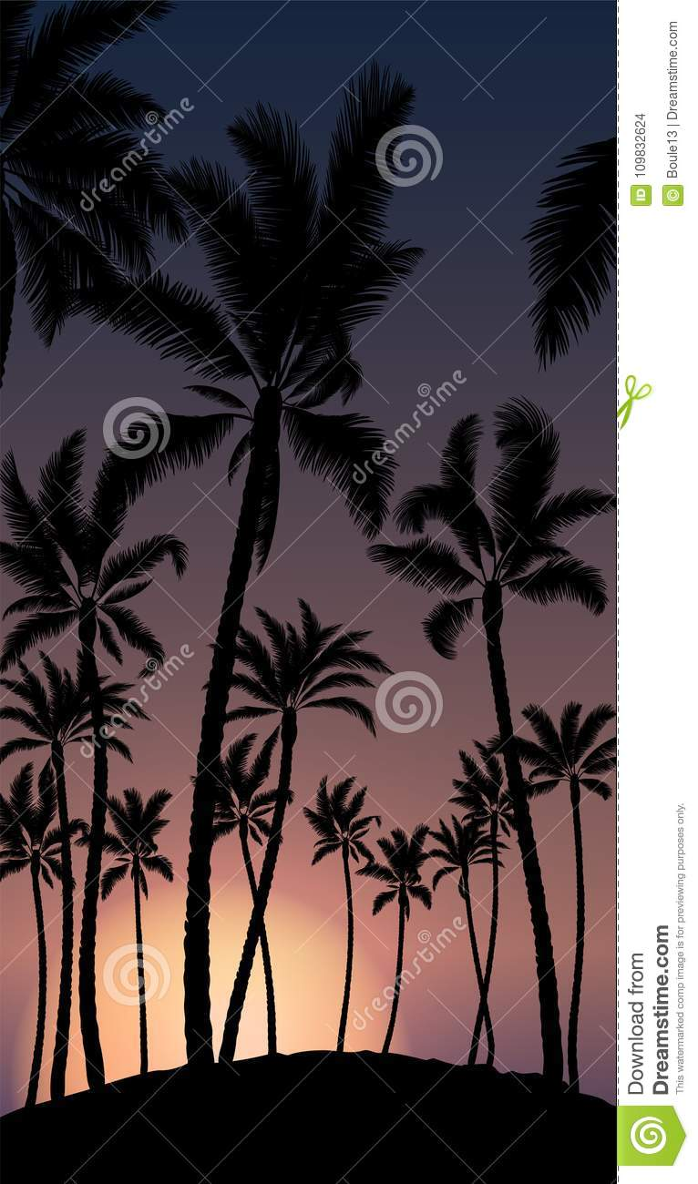 Tropical palm with orange sun sunset and blue sky