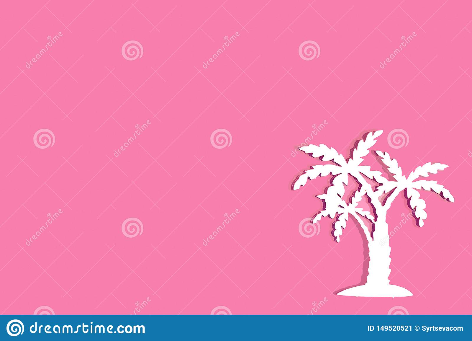 Tropical palm tree on pink background, place for text