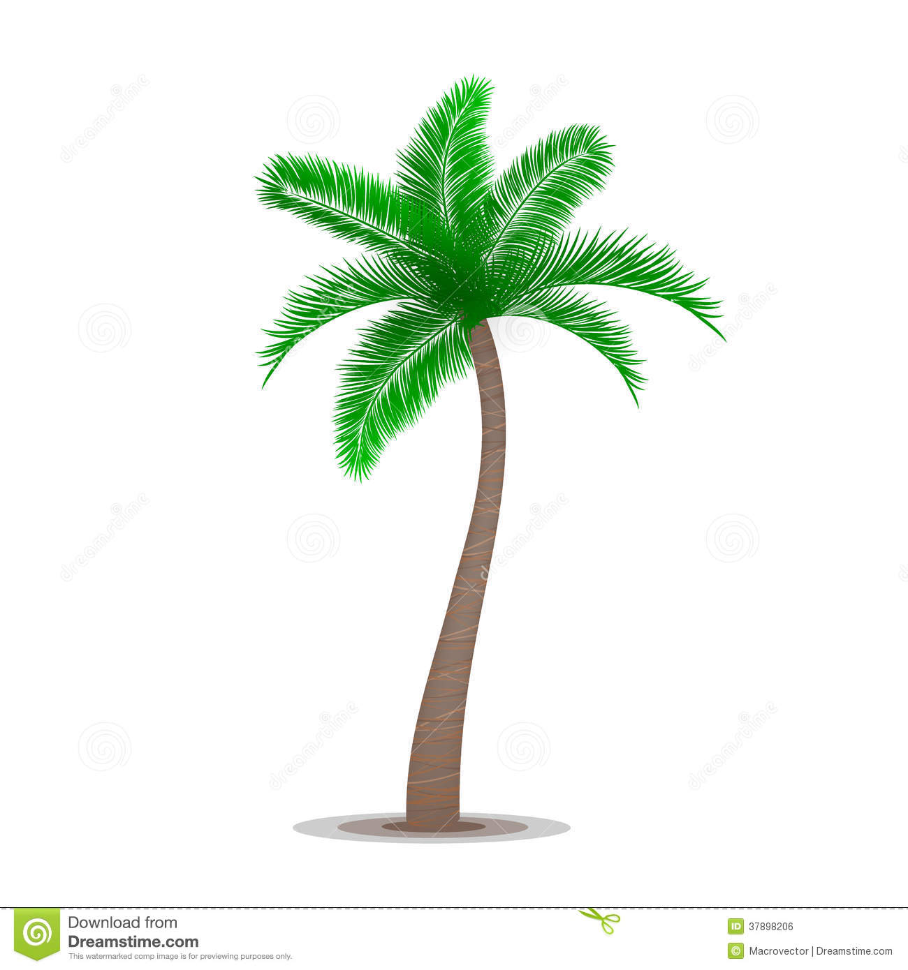 Tropical Palm Tree Symbol Stock Vector Illustration Of Isolated