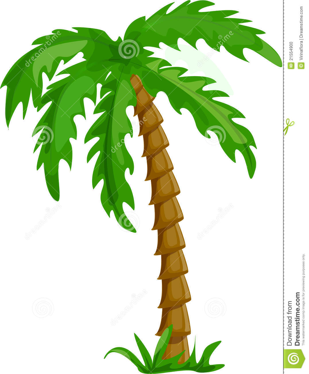 Tropical Palm Trees Isolated Vector Stock Vector ...