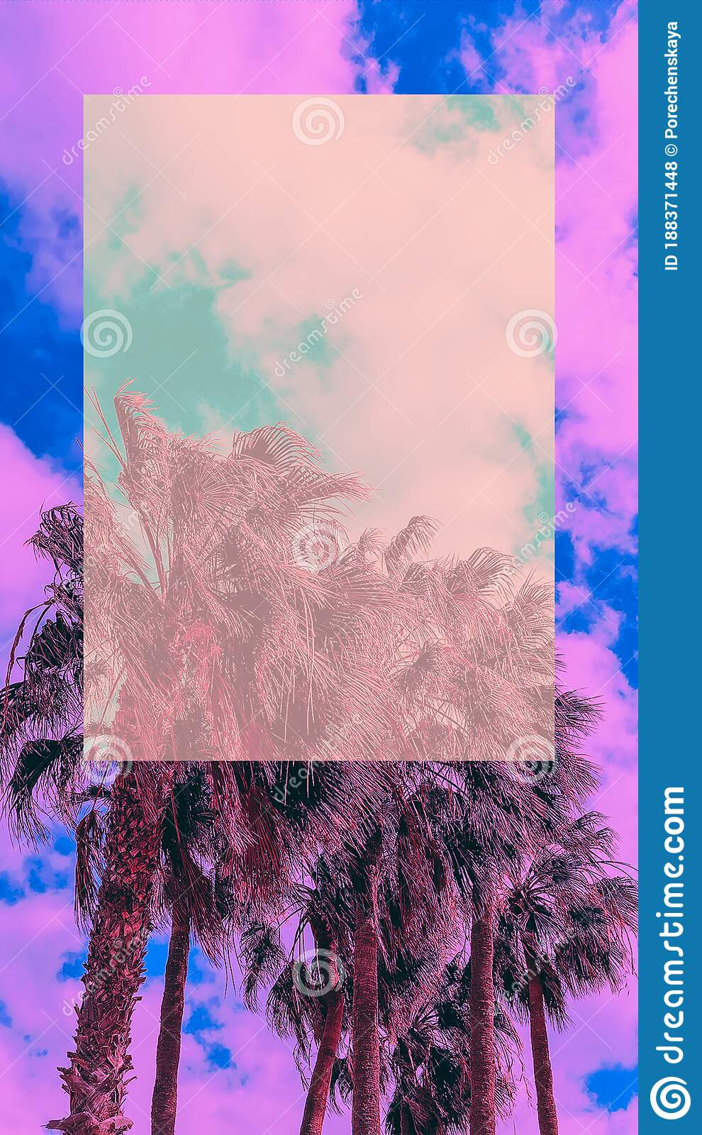 Tropical Palm Wallpaper For Smart Phones And Desktop Travel Fashion Vibes Stock Photo Image Of Plant Tree 188371448