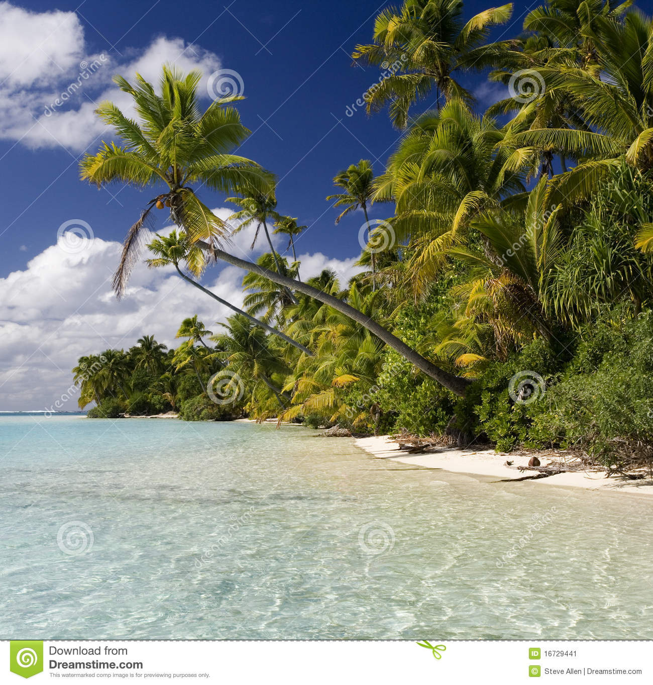 Tropical Island Paradise: The Cook Islands Stock Image