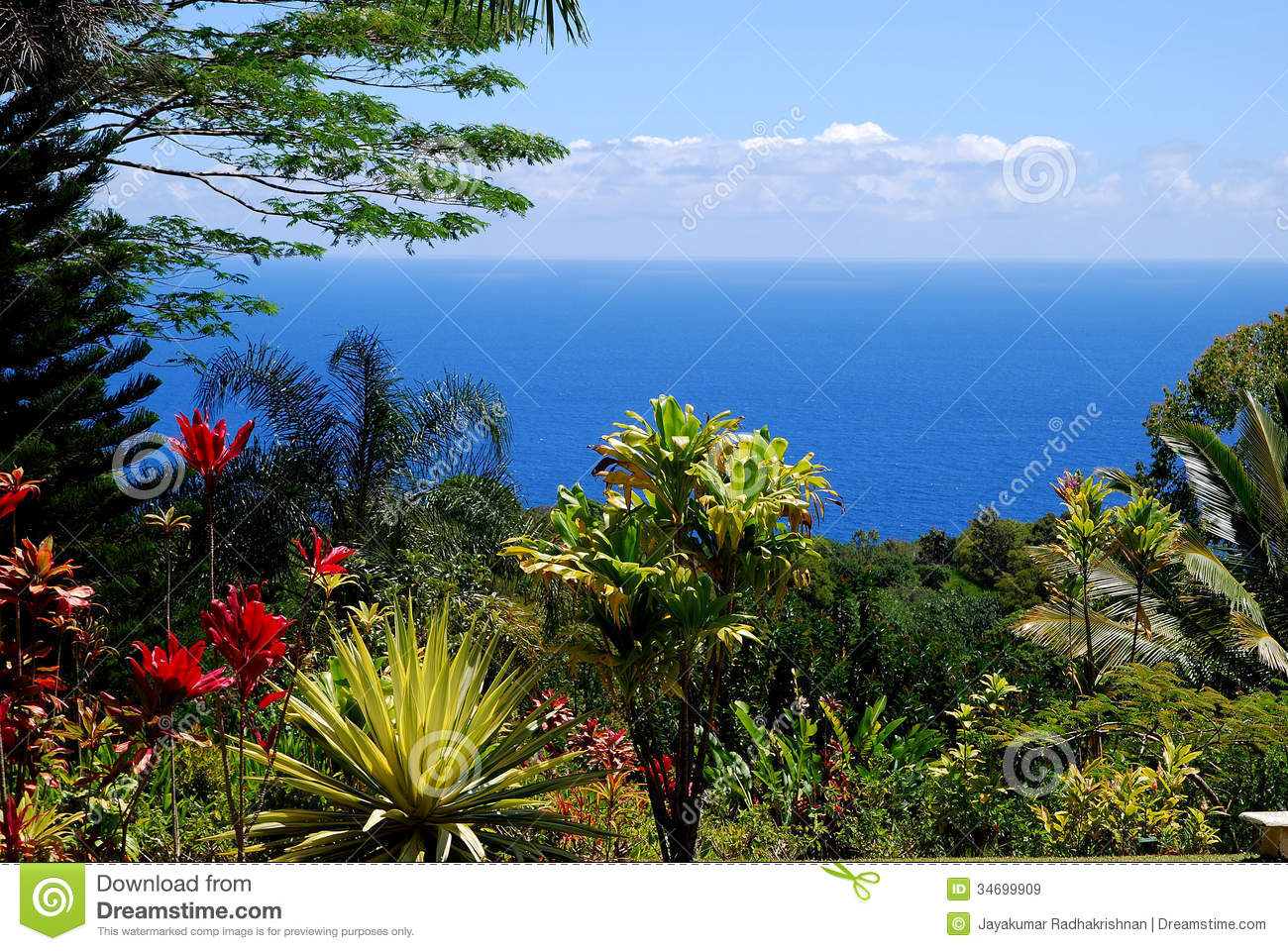 Scenic view of the beautiful paradise in Hana Road Maui with blue ...