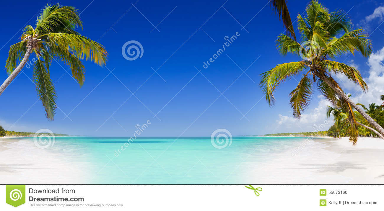 Hd Tropical Island Beach Paradise Wallpapers And Backgrounds: Tropical Paradise With Palm Trees Stock Photo