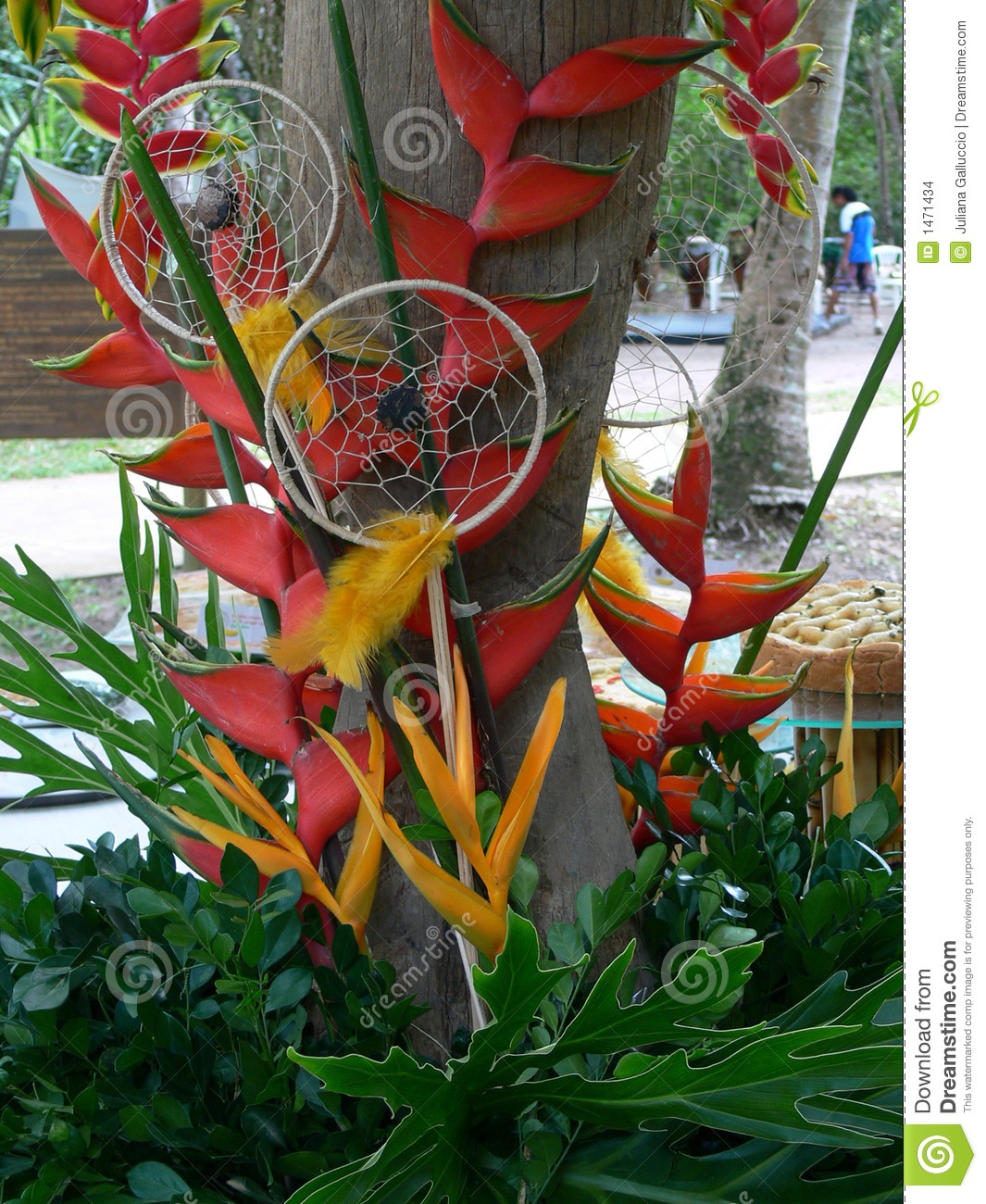 Tropical party decorations stock photo image of outdoor for Tropical outdoor decorating ideas