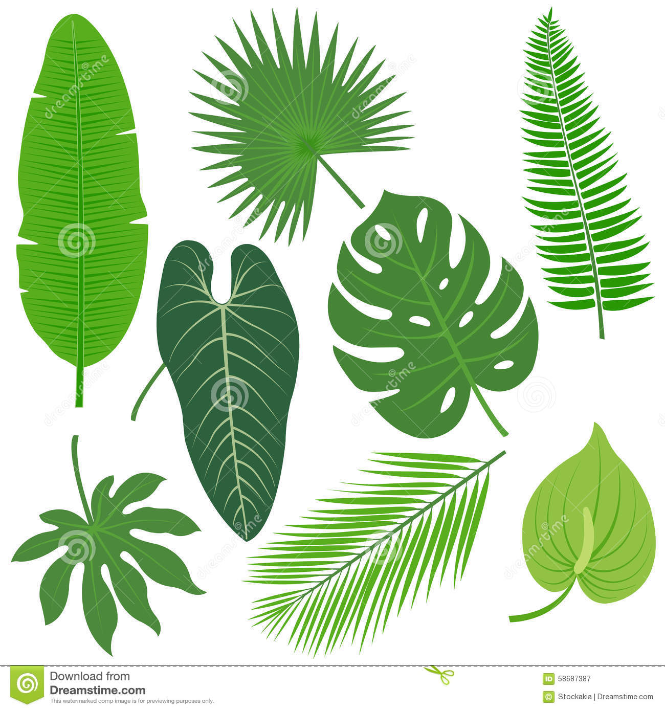 tropical plant leaves vector collection stock vector