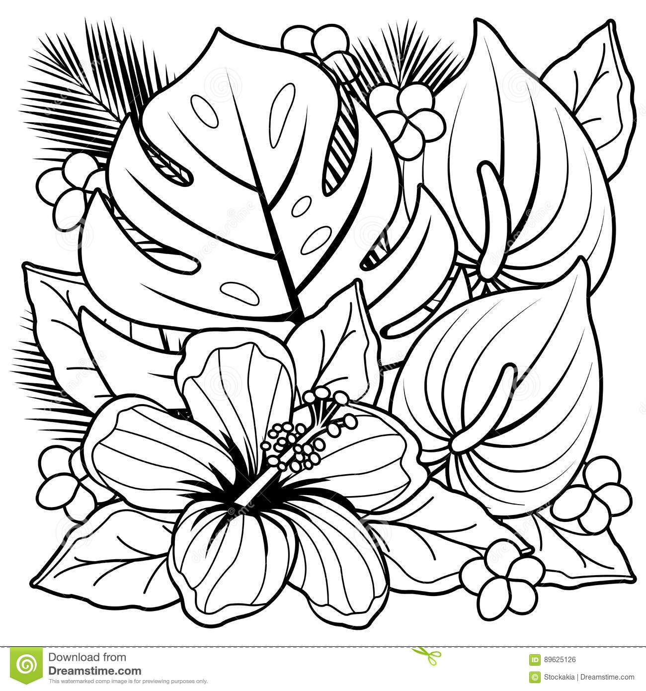 Tropical plants and hibiscus flowers coloring book page stock tropical plants and hibiscus flowers coloring book page mightylinksfo