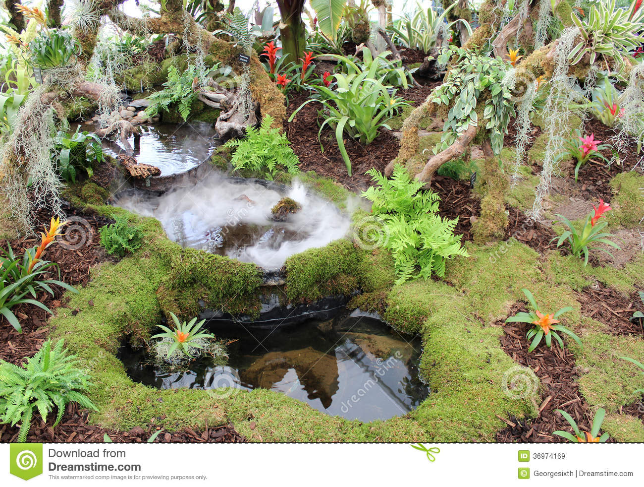 Tropical Rainforest Garden Display Southport Show Stock Image