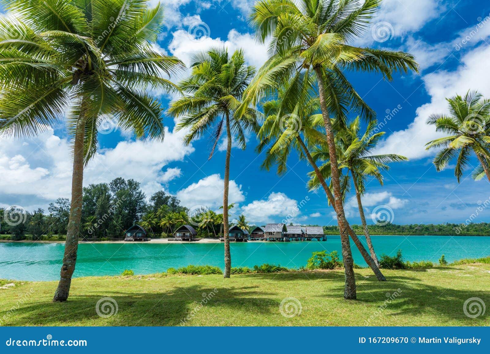 Tropical Resort Destination In Port Vila Efate Island Vanuatu Beach And Palm Trees Stock Photo Image Of Tahiti Vibrant 167209670