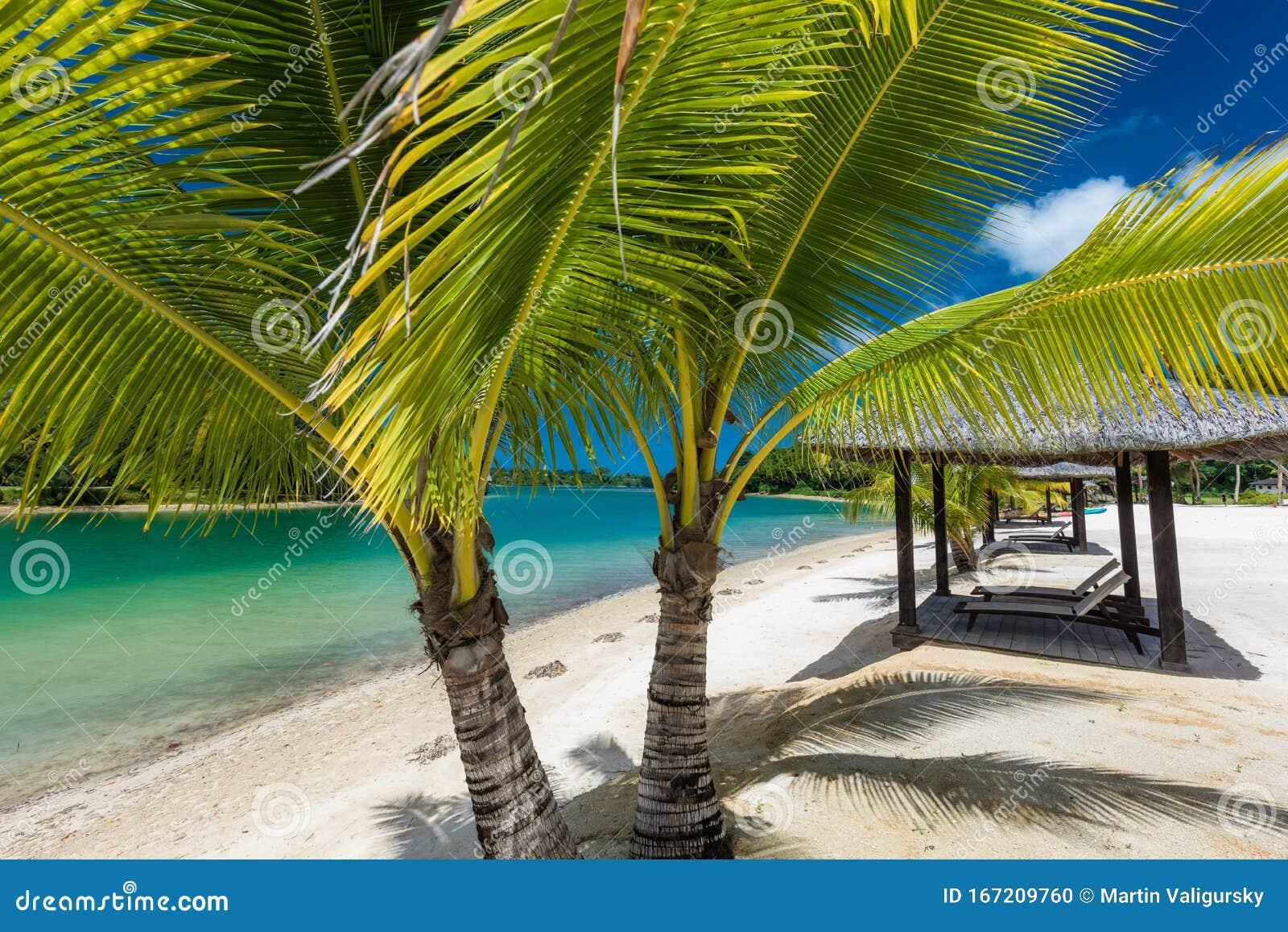 Tropical Resort Destination In Port Vila Efate Island Vanuatu Beach And Palm Trees Stock Photo Image Of Vila Gazebo 167209760