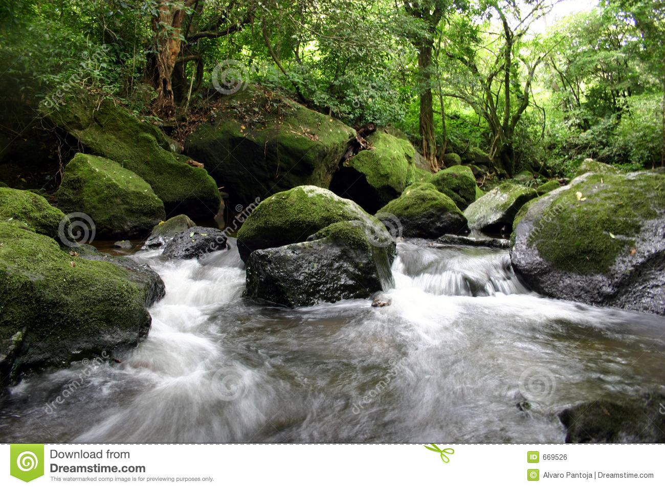 Tropical River Royalty Free Stock Image - Image: 669526