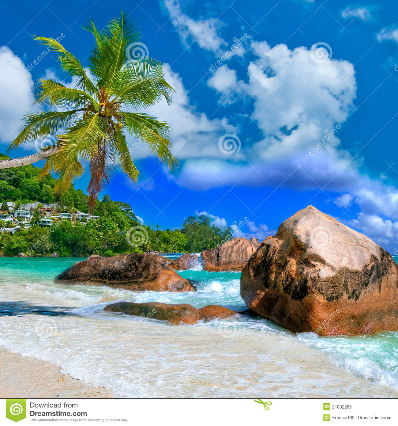Tropical Scenery Royalty Free Stock Photo  Image: 21802285