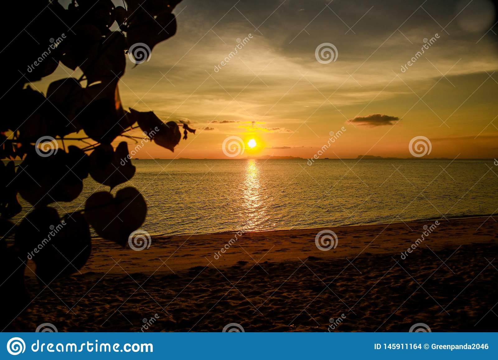 Tropical sunset beach. Beautiful background