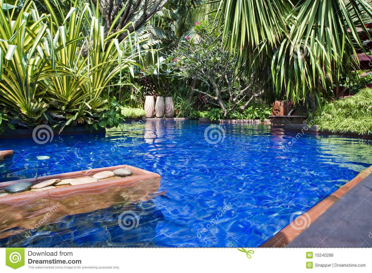 Tropical swimming pool stock photo. Image of azure, fountain ...