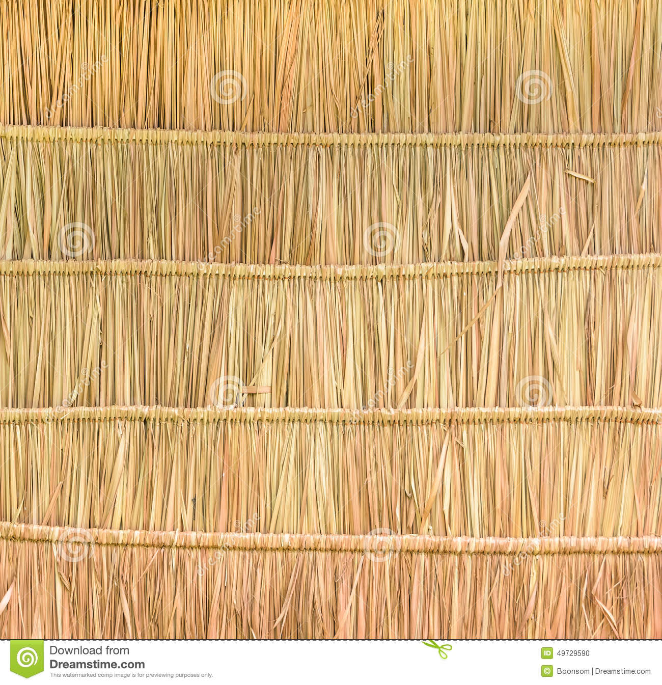 Tropical Thatched Roof Background Stock Photo Image