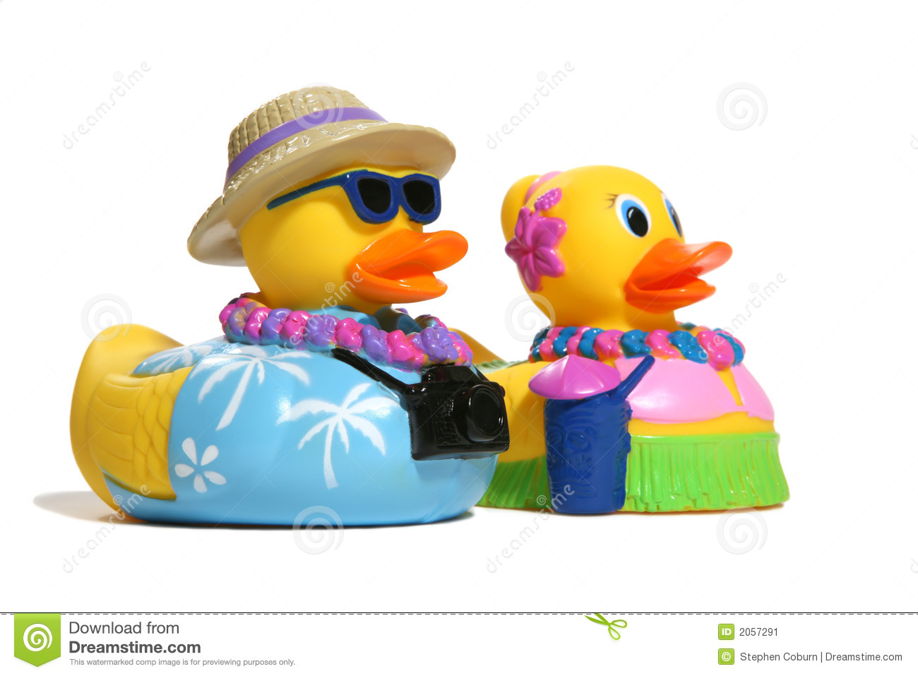 Tropical Toy Ducks