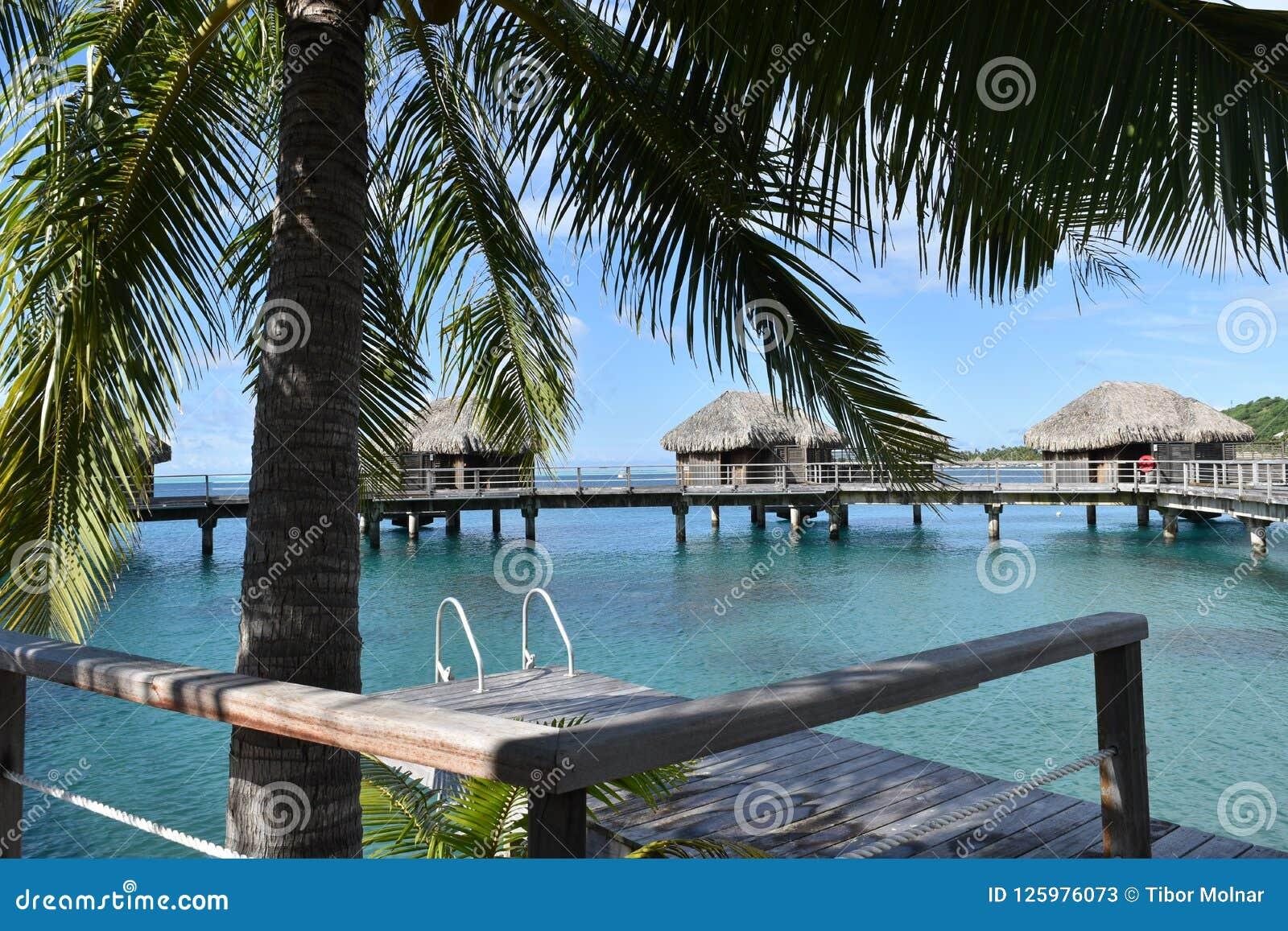 Tropical Water Huts Bungalows In Bora Bora Tahiti Idyllic