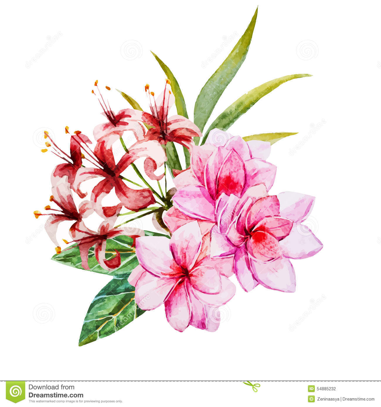Tropical Watercolor Flowers Stock Vector Image 54885232