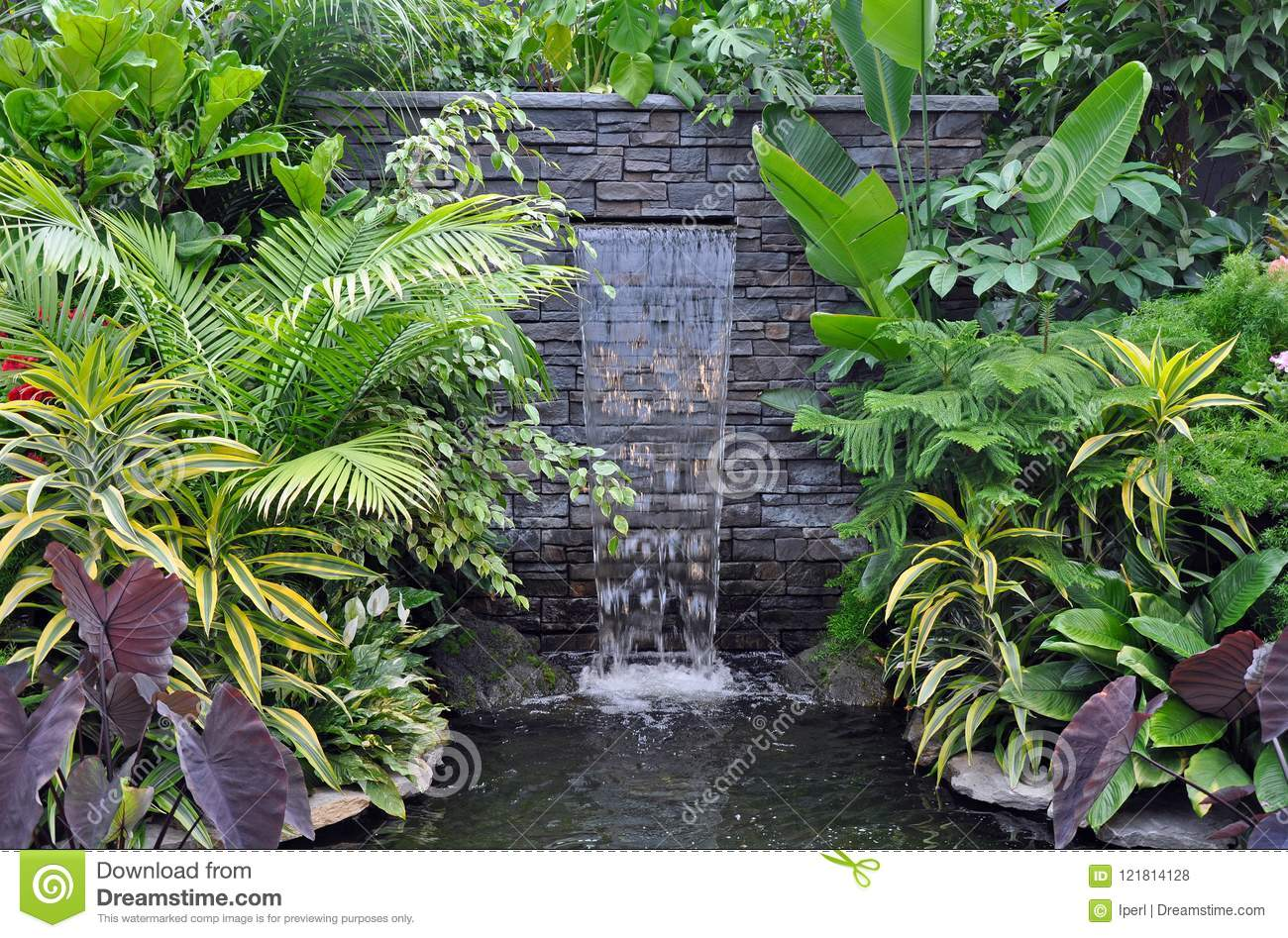 Tropical Waterfall And Pond
