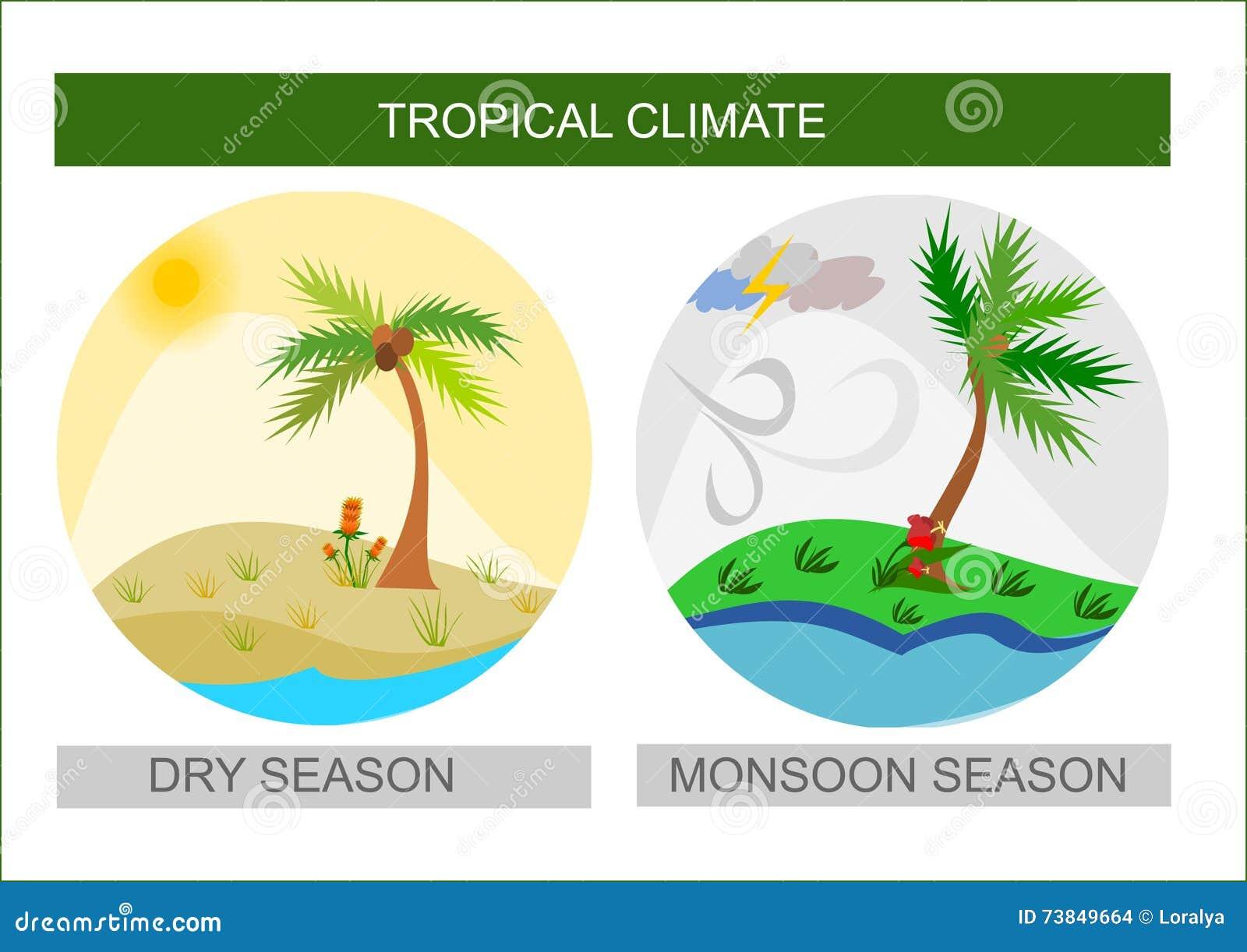 Icone del tempo tropicale, stagione dei monsoni bagnati e stagione secca-2645
