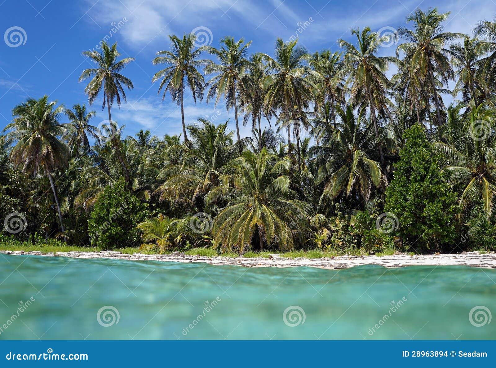 Tropikalna plaża od wody powierzchni