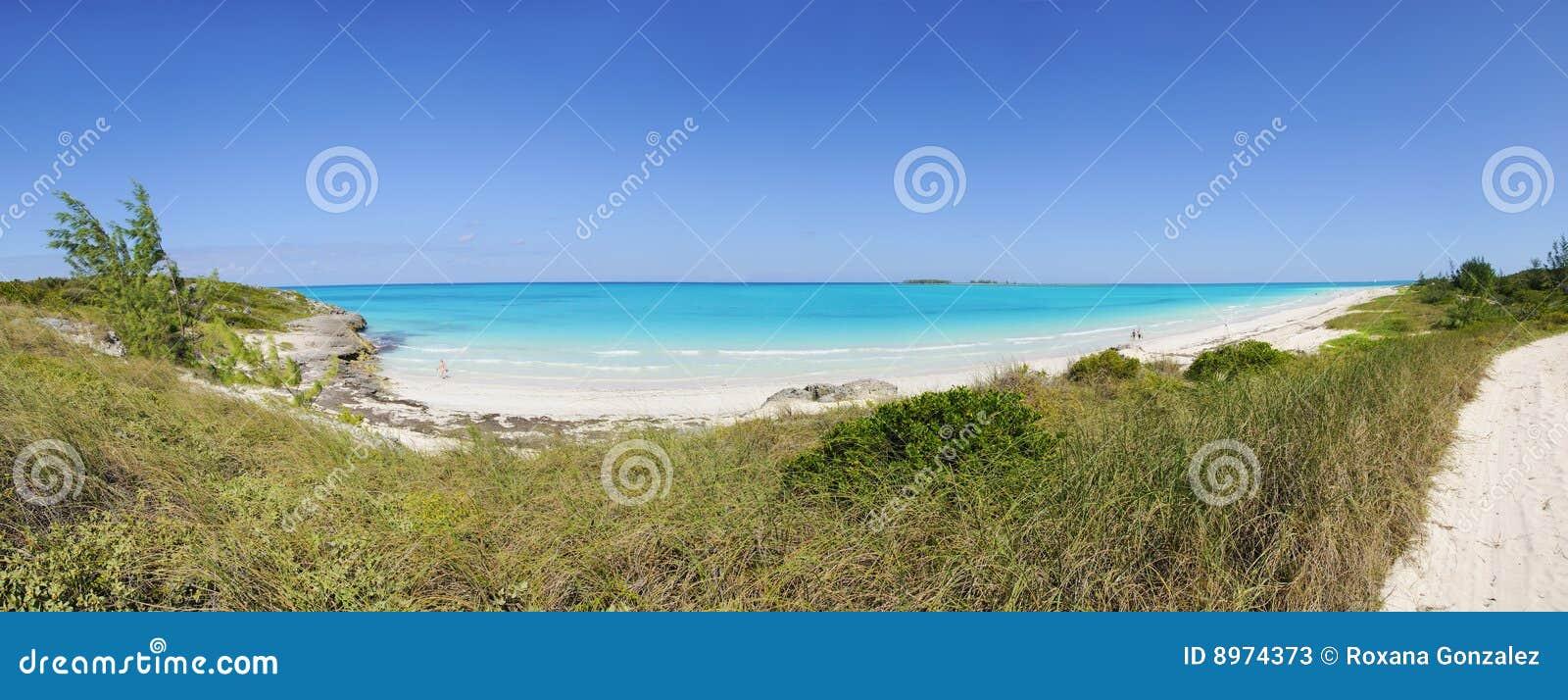 Tropikalna plażowa panorama