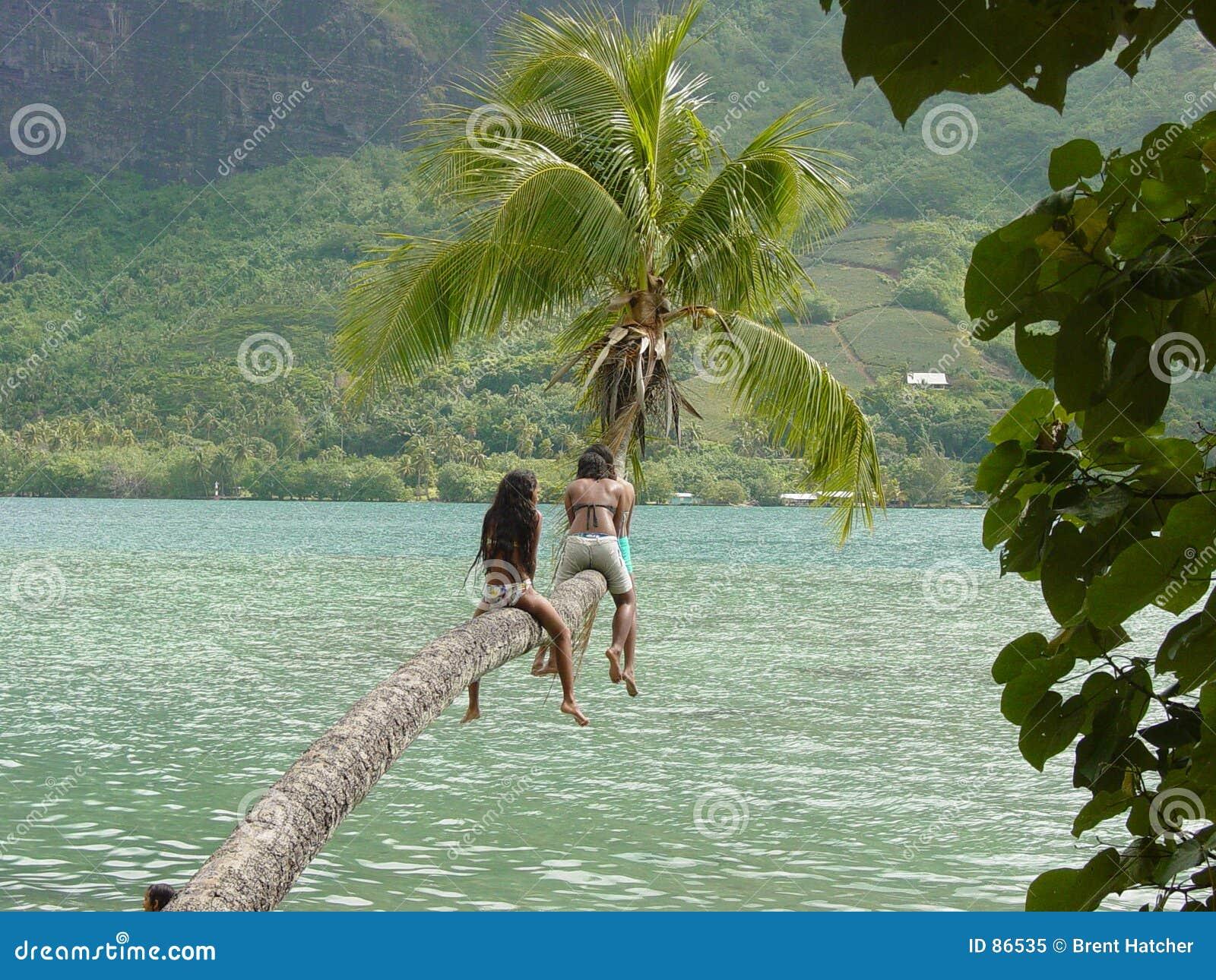 Tropikalne dzieci