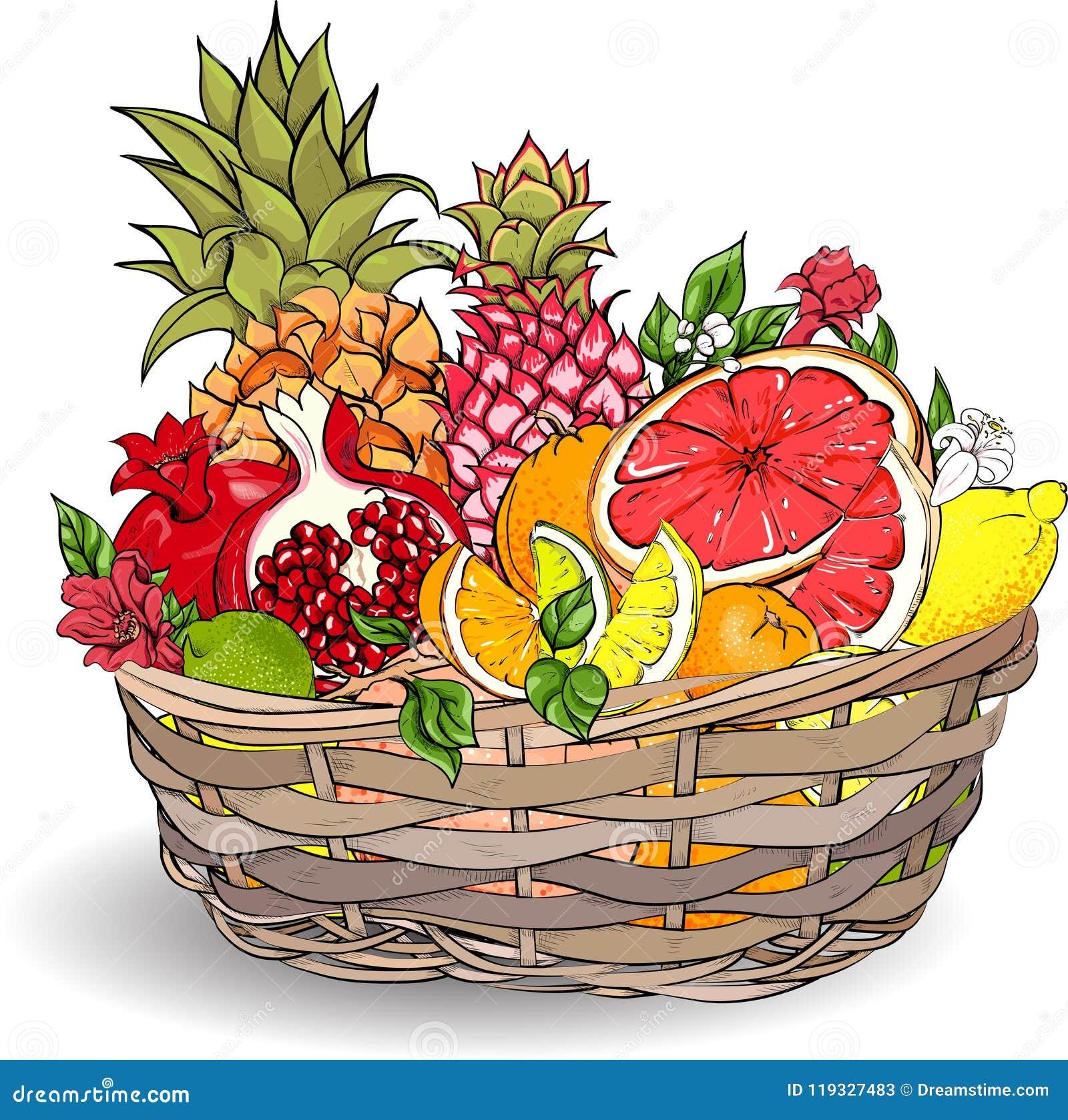 Tropikalne owoc w łozinowym koszu