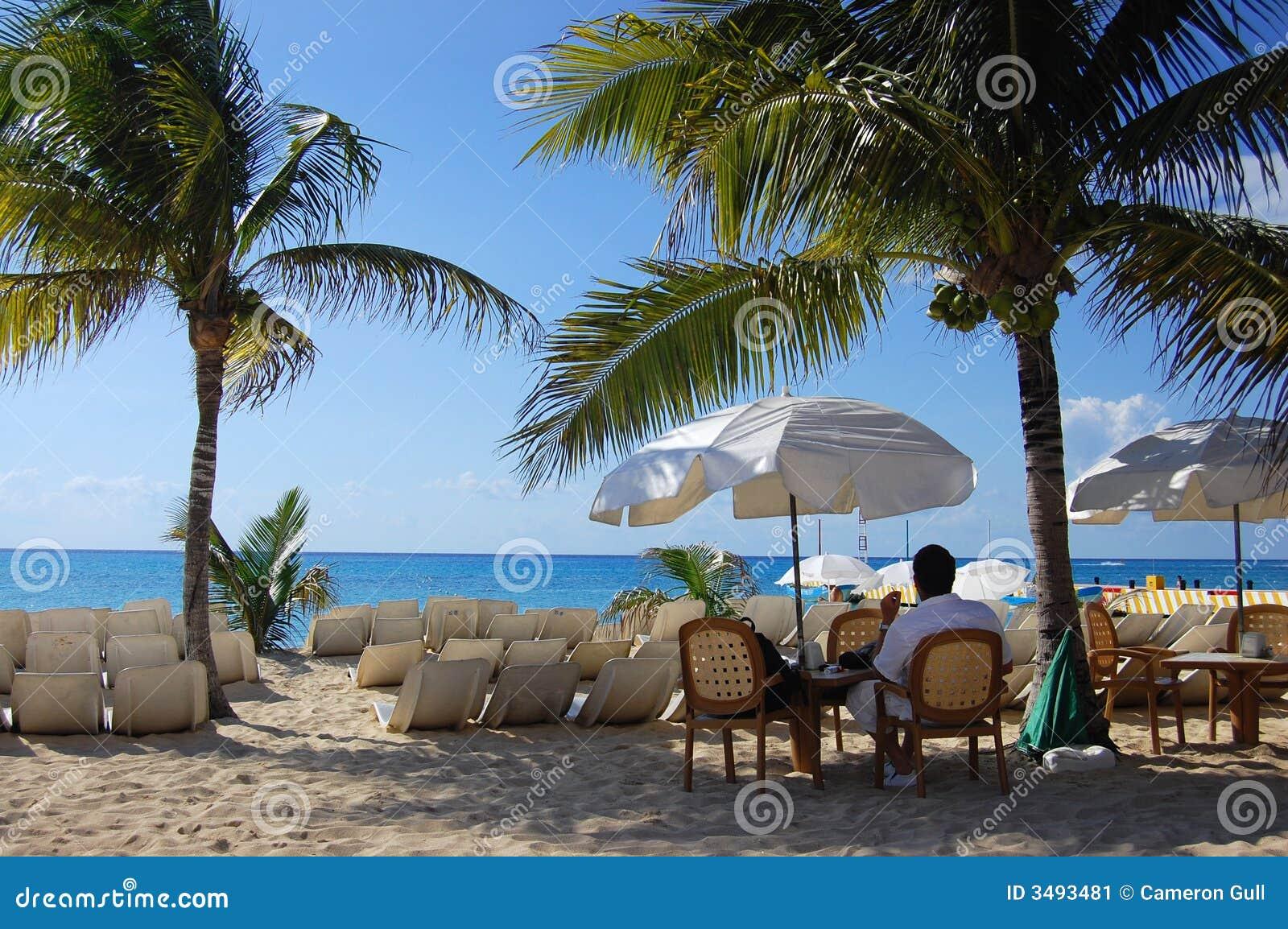 Tropikalne raju się odprężyć