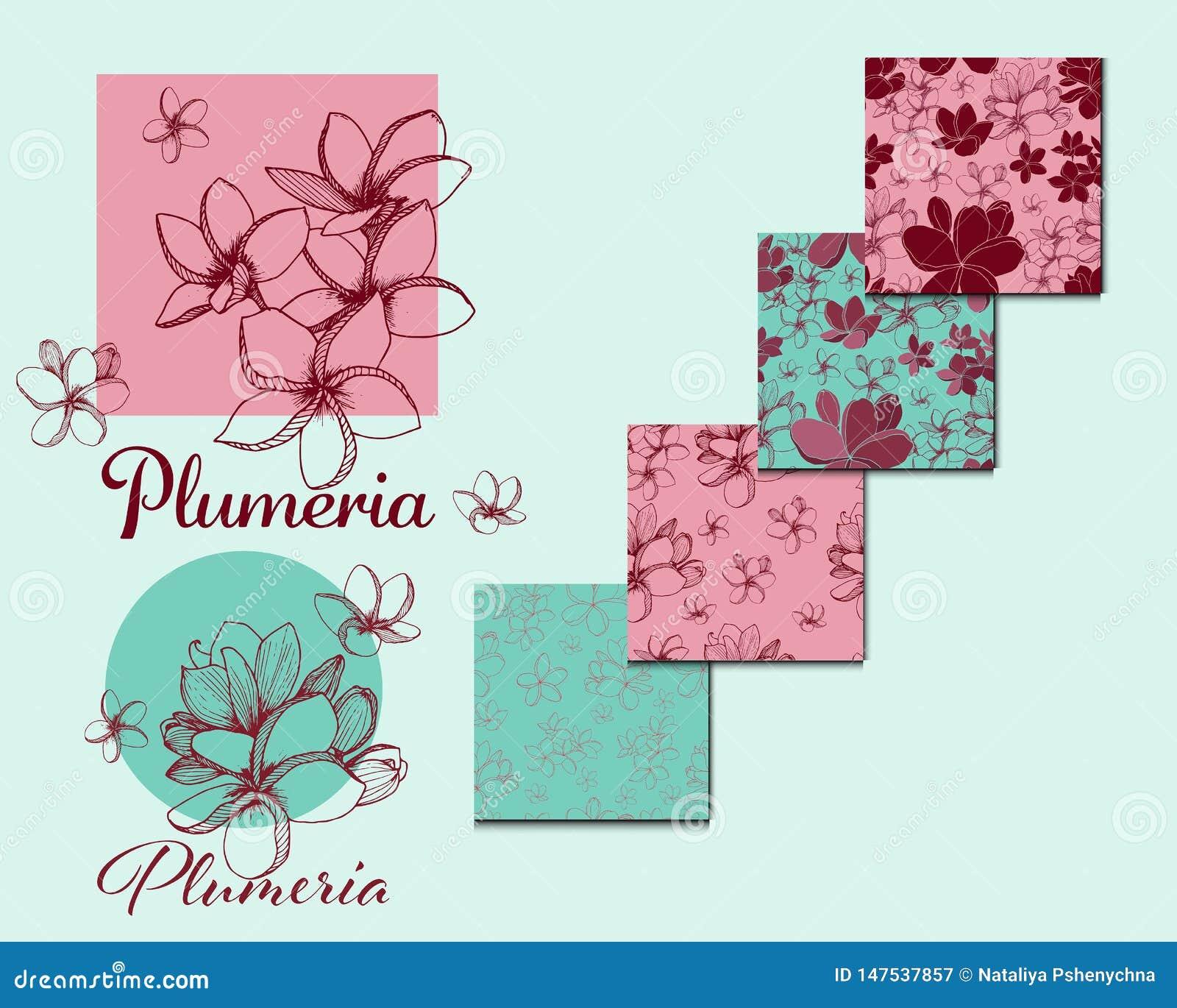 Tropikalni egzotyczni kwiaty Plumeria kolekcja