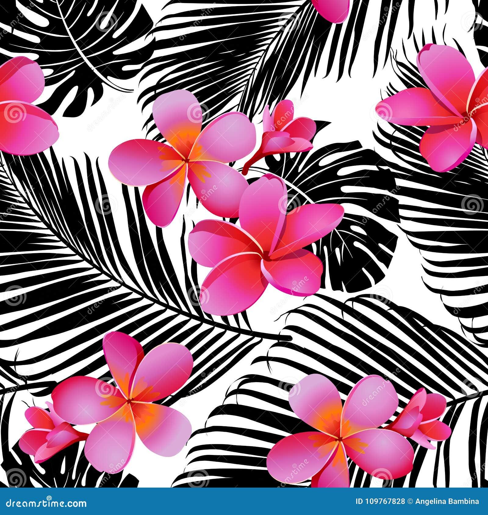 Tropikalni korali kwiaty, liście na czarny i biały tle i bezszwowy wektor