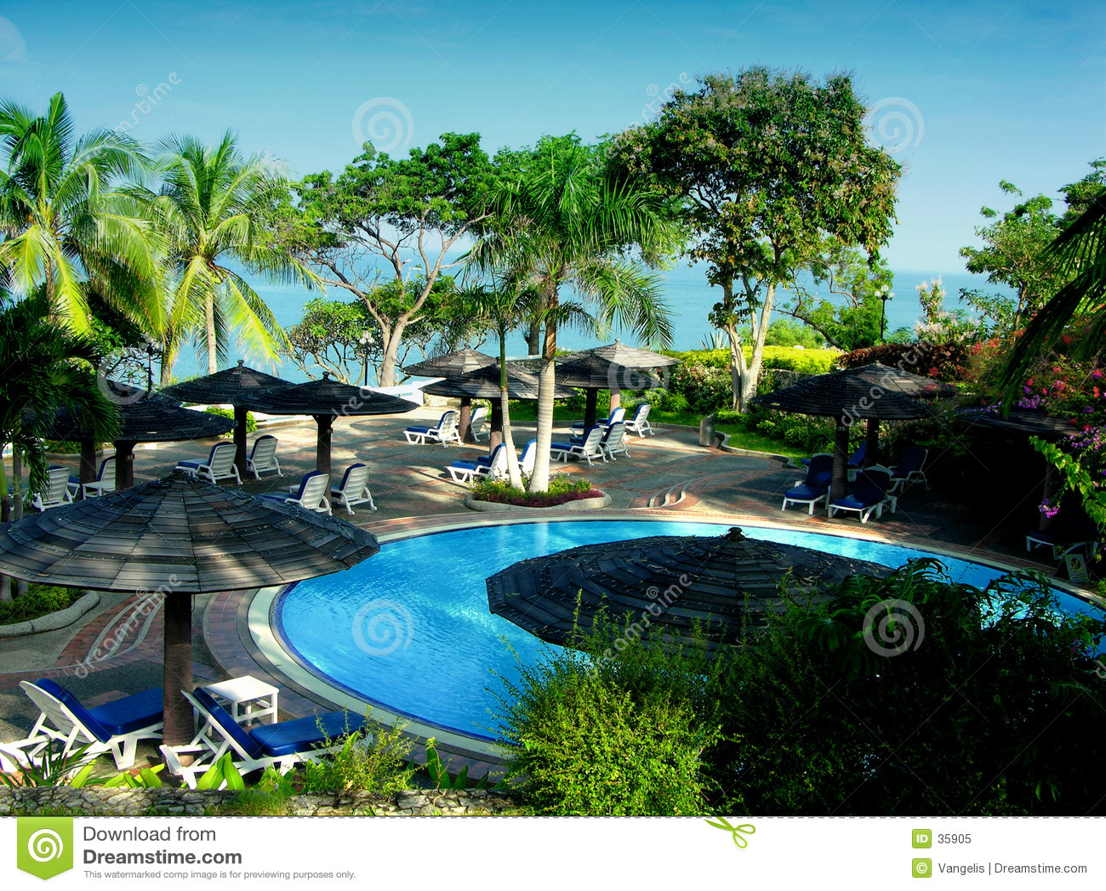 Tropikalny basenu