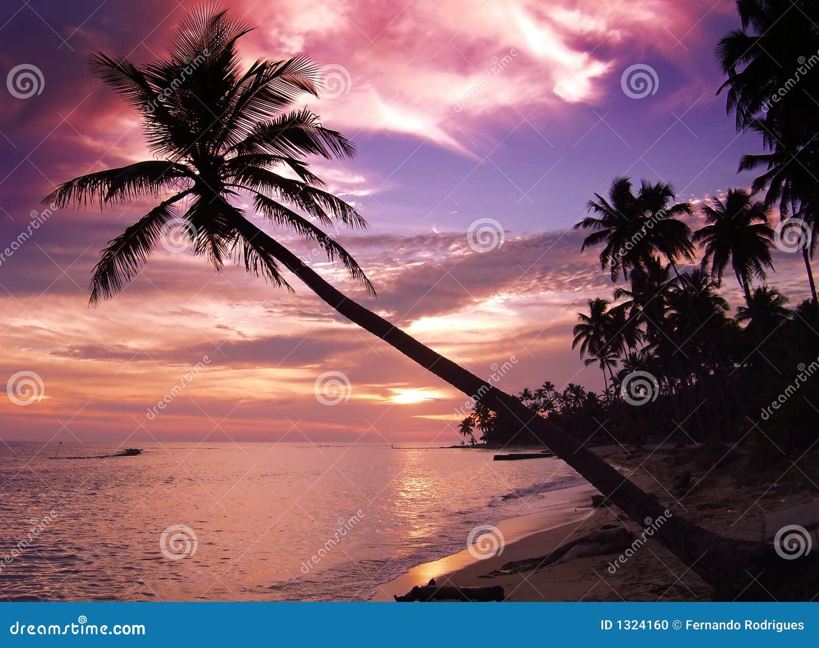 Tropikalny piękny zachód słońca