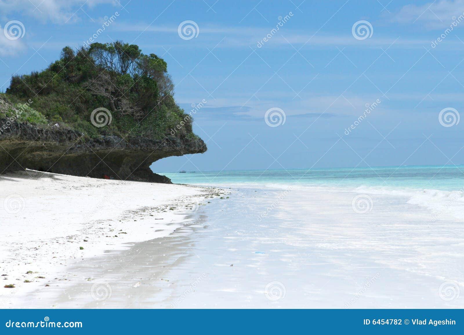 Tropikalny plażowy Zanzibaru