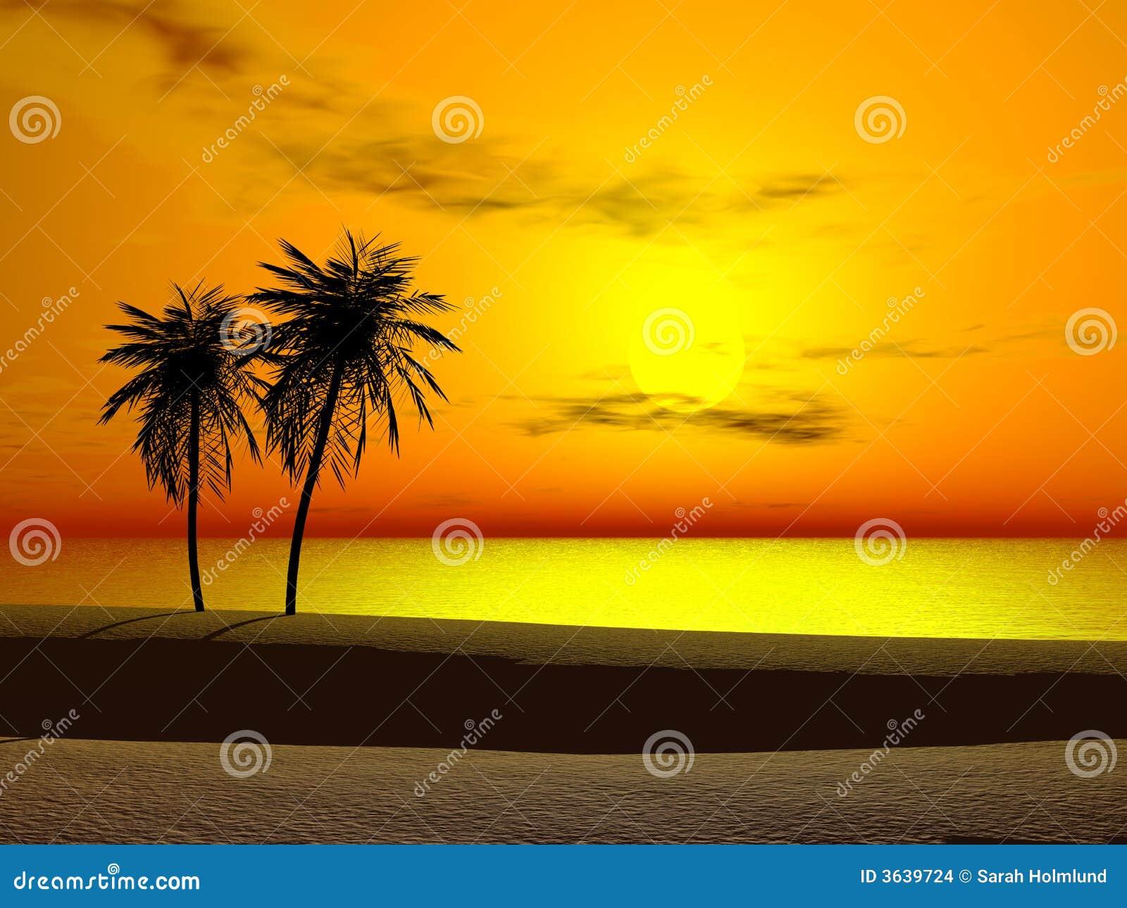 Tropikalny wschód słońca